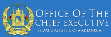 The Chief Executive Officer